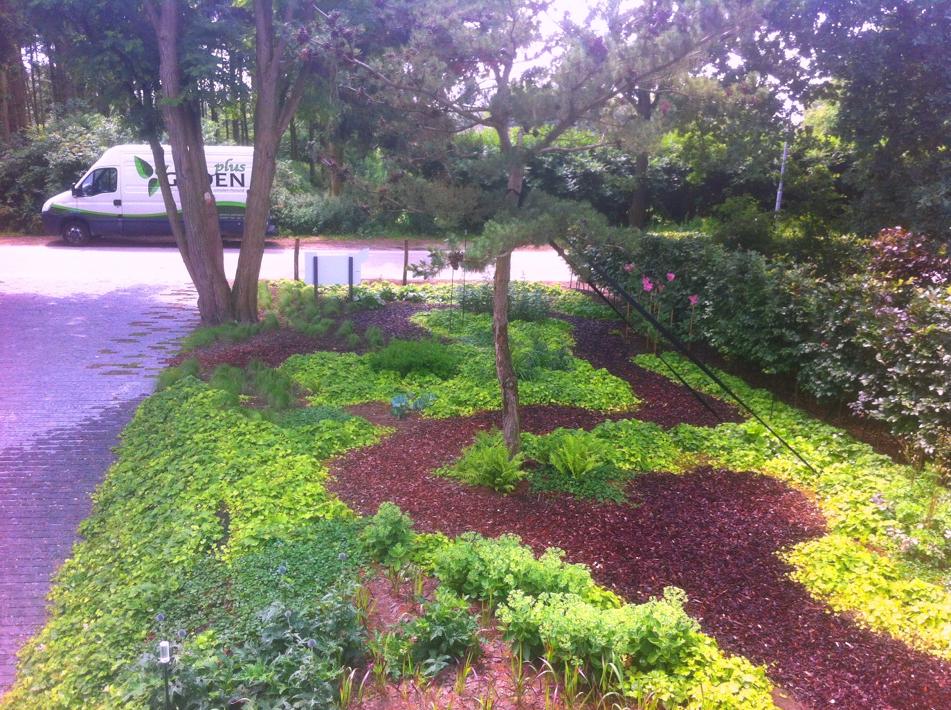 groenplus hoveniers tuinonderhoud