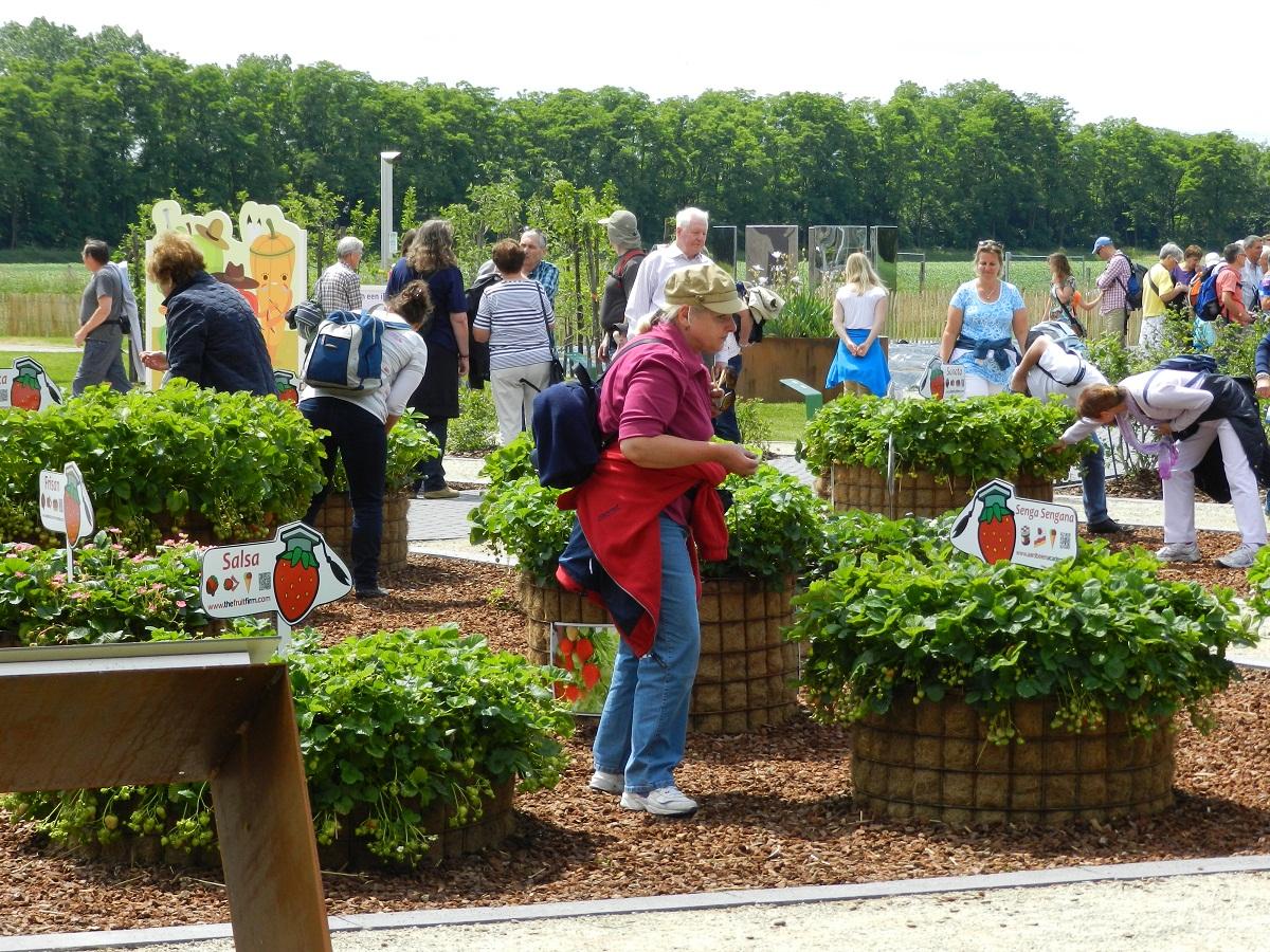 Aanleg tuin Floriade Venlo (8)