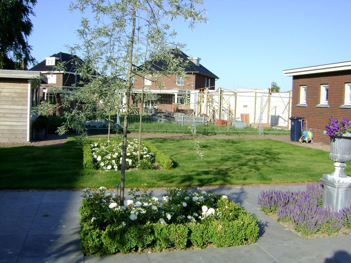 Kleurige voor & achtertuin Horst (1)