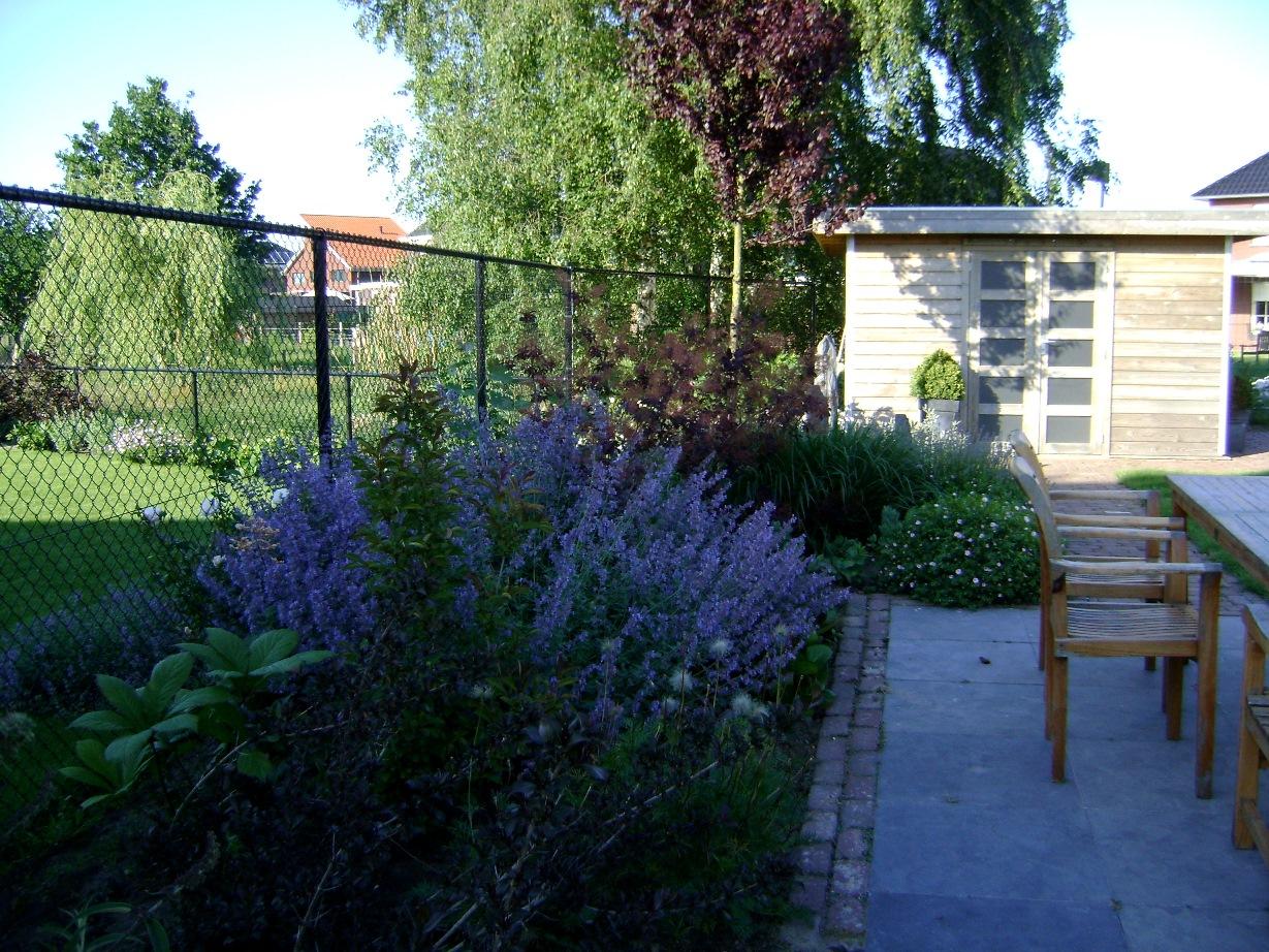 Kleurige voor & achtertuin Horst (2)