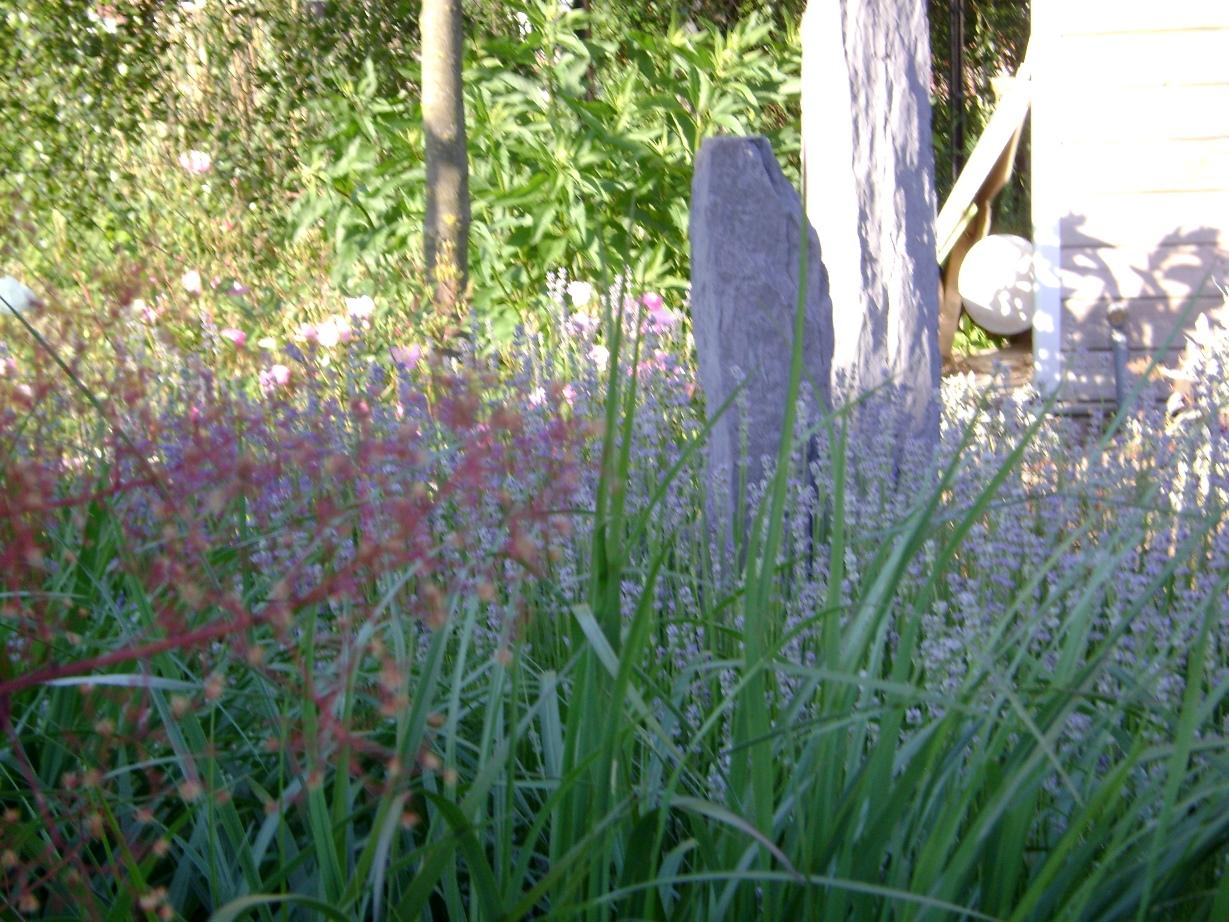 Kleurige voor & achtertuin Horst (6)