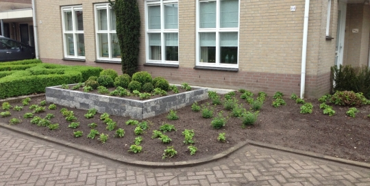 Minimalistische tuin Horst (1)