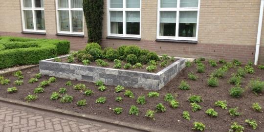 Minimalistische tuin Horst (2)