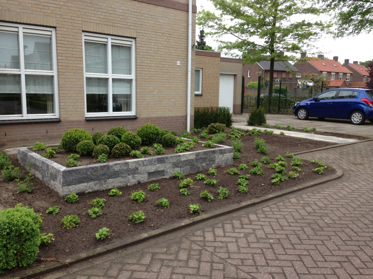 Minimalistische tuin Horst (4)