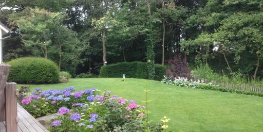 Onderhoud bostuin Venlo (6)