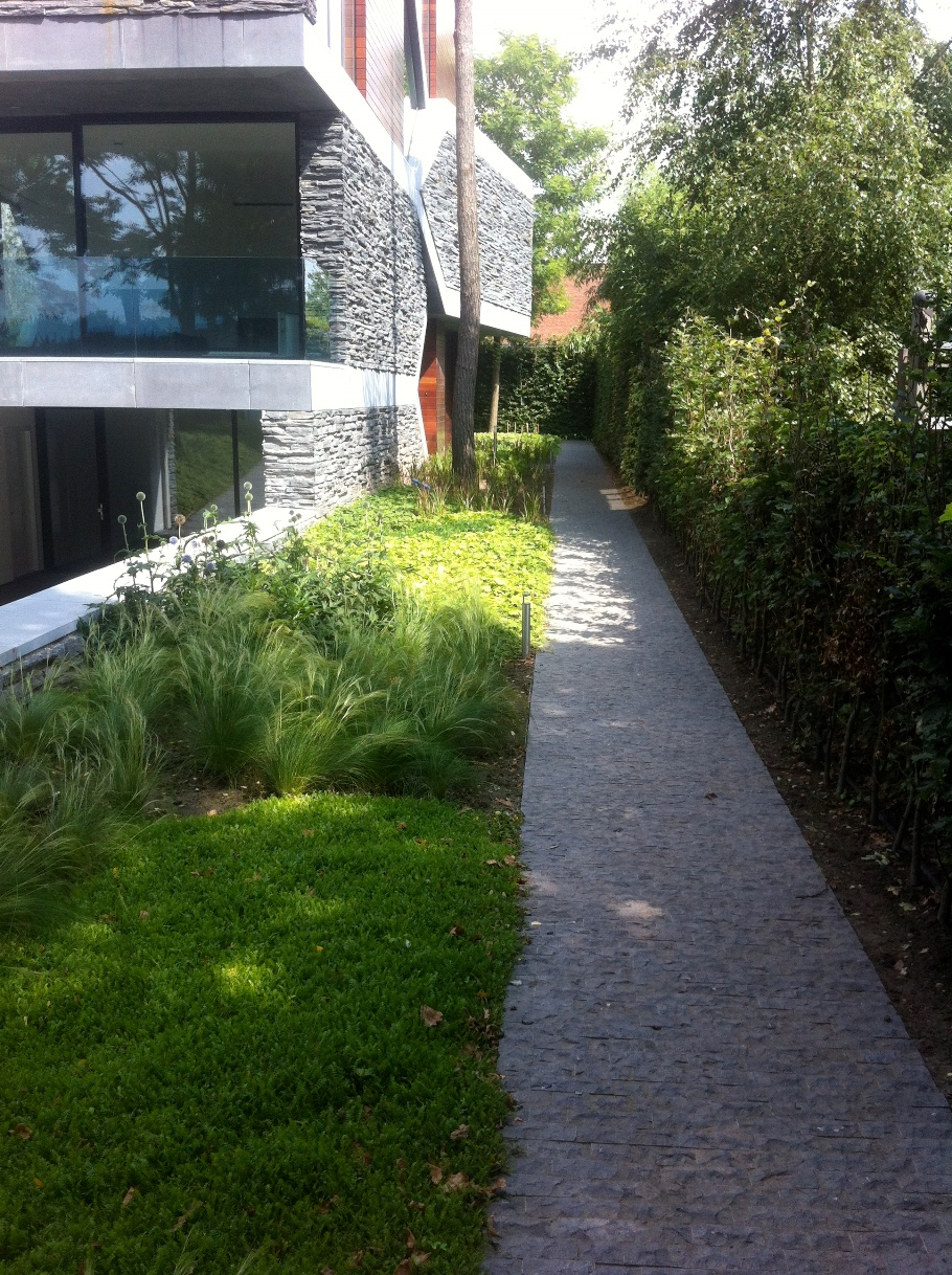 Ontwerp en aanleg tuin Venlo (10)