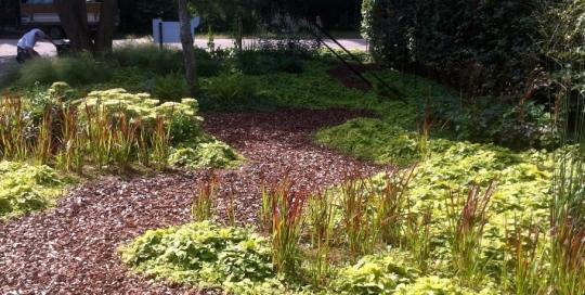 Ontwerp en aanleg tuin Venlo (7)
